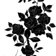 Black rose — Stock Vector