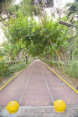 Izmir Kulturpark jogging trail — Stock Photo
