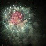 Celebration firework shinig in the black sky — Stock Photo
