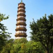 图库照片: Flower Pagodof temple of Six BanyTrees