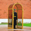 Tomb of Unknown Soldier at wall of Kremlin — Stock Photo #41829849