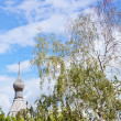Wooden dome of russian church and birch — Foto Stock