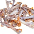 Gnawed chicken bones — Stock Photo
