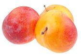 Fresh ripe yellow plums — Stock Photo