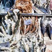 Fresh cool fish on ice at street market — Stock Photo