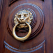Lion head shaped door handle - Zdjcie stockowe