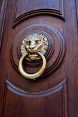 Lion head shaped door handle — ストック写真