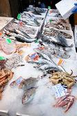 Peixe fresco fresco no gelo no mercado de rua — Foto Stock