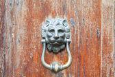 Ion head shaped door handle on shabby door — Stock Photo