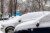Cars covered with snow on parking — Stock Photo