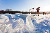 Zima pływaków na zamarznięta rzeka — Zdjęcie stockowe