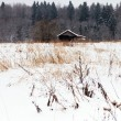 Lonely house in the woods in winter — Stok fotoğraf