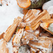 Chopped alder fire wood in snow — Stock Photo #18651419