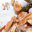Chopped alder fire wood in snow — Stock Photo