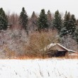 Wooden house on edge of snowed forest — Stock Photo