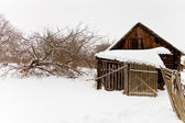 Abandoned wooden shed in snow-covered village — Stock Photo