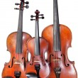 Three sizes of fiddles — Stock Photo #20042747