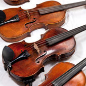 Several used violins — Stock Photo