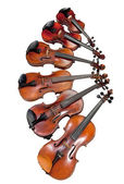 Different sized violins — Stock Photo