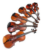 Six sizes of violins — Stock Photo