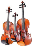 Three sizes of fiddles — Stock Photo