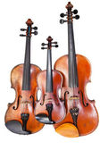 Family of violins — Stockfoto