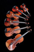 Different sized violins on black — Stock Photo