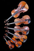 Different sized fiddles on black — Foto Stock