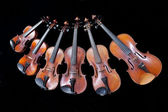 Family of different sized violins on black — Foto Stock