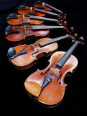 Six violins with black background — Stock Photo
