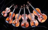 Family of different sized violins on black — Stock Photo