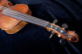 Violin pegbox on black velvet — Stock Photo