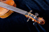 Fiddle pegbox on black velvet background — Stock Photo