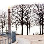 View of Obelisk from Tuileries Garden, Paris — Stock Photo #22983438