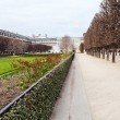Palais-Royal garden in Paris - ストック写真