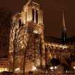 Cathedral Notre Dame de Paris at night - Stock Photo