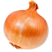 Common onion bulb — Stock Photo