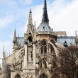 Fountain of the Virgin and Notre-Dame de paris - Stock Photo