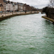 Seine river in Paris — Stock fotografie