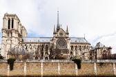 Catedral de notre-dame de paris — Foto Stock