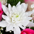 Stock Photo: White chrysanth in flower bouquet