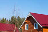 Red tile roofs of new wooden houses — Stock fotografie