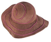 Brown broad brim felt hat — Stock Photo