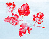 Monotypy with red maple leaves — Foto de Stock