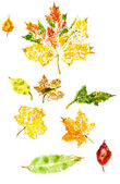 Monotypy with autumn leaves — Stock Photo