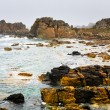 Stone coastline of Atlantic ocean in Brittany — Stock Photo