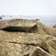 Rocks on Atlantic coast in Brittany — Stock Photo
