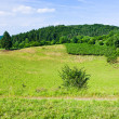 Landscape of low Eifel mountains — Stock Photo #26633205