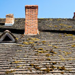 Stock Photo: Roof and chimneys