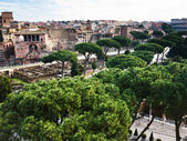 Roman Forum and road to Coliseum — Stock Photo
